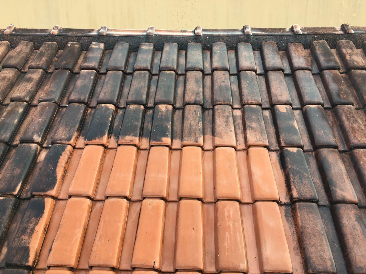 Limpeza de telhas