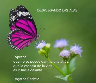 lema mariposa-01.jpg