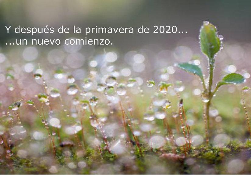 gotas_de_agua_redes_sociales_-_mas_peque