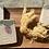 Thumbnail: Seascape  (Sea Moss Skin Care All Natural)