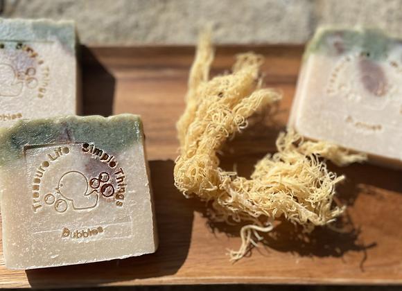 Seascape  (Sea Moss Skin Care All Natural)