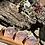 Thumbnail: Satsuma