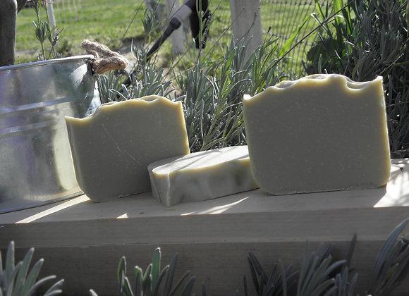 25% Laurel Berry Aleppo Soap