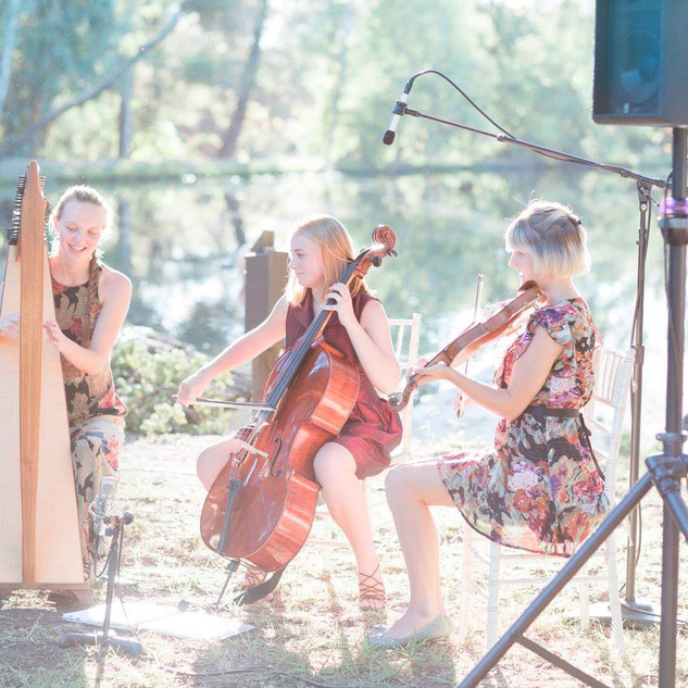 The String Sisters GV