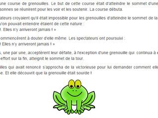 L'histoire de la course de grenouilles