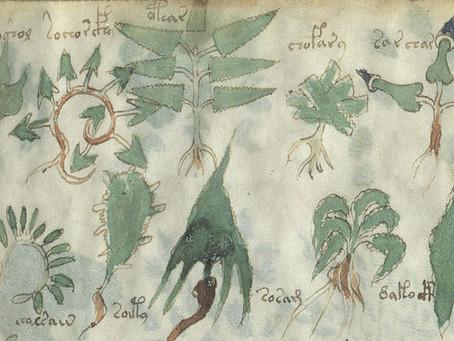 The Voynich Manuscript: A Medieval Mystery