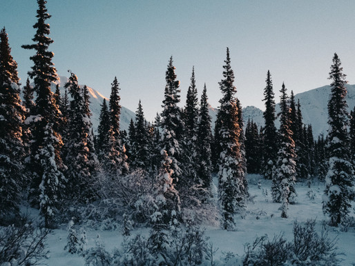 A North Pole Christmas Guide
