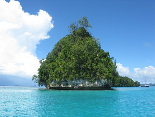 First Few Days in Palau
