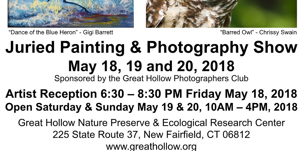 Juried Painting and Photography Show