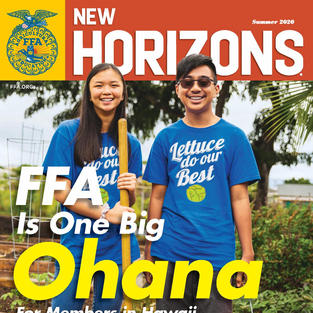 FFA Horizons