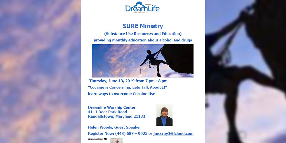 SURE Meeting - June