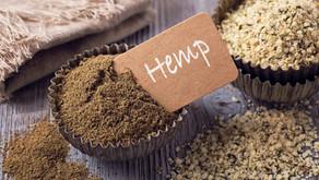 HEMP - The Superfood you need