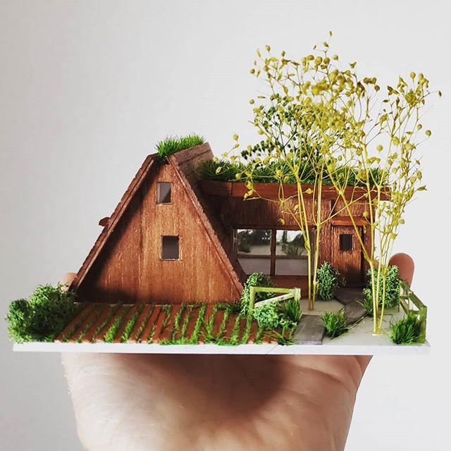 コブシとイチョウの山小屋