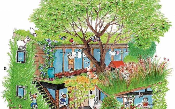 コナラの家.jpg