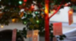 arbre de quartier.jpg