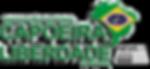 Capoeira Liberdade   Itajubá MG