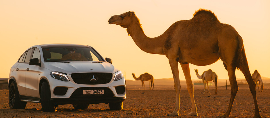 Top 5 Benefits of Renting Cars in Dubai