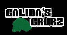 GG Logo no tag_300x.webp