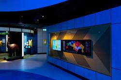 Australian Sports Museum-53