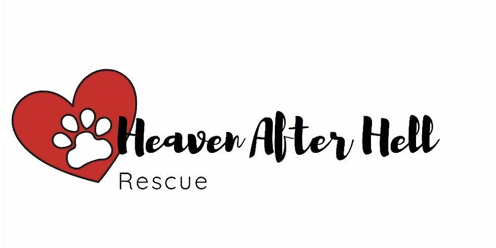 Trivia Night for Heaven After Hell Rescue