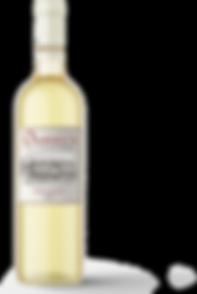 wine-bottle_vidal-15.png