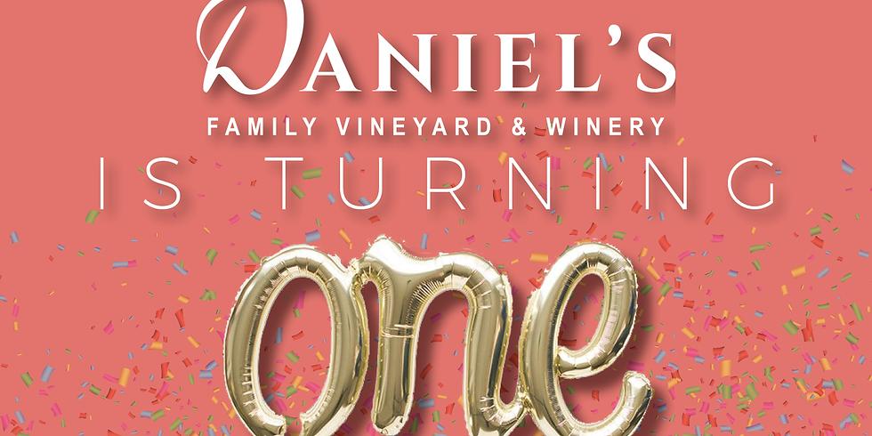 Daniel's Vineyard 1st Birthday!