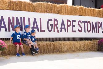 Grape Stomp 2017-222.jpg