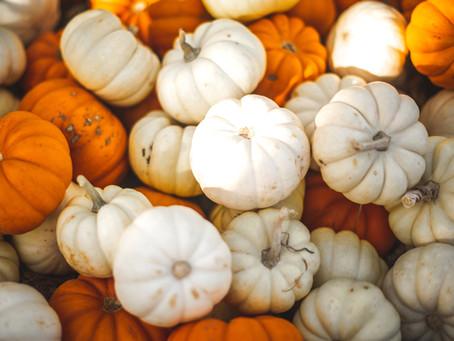 Sip. Spook. Repeat: October Updates at Daniel's Vineyard