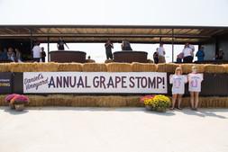 Grape Stomp 2017-115.jpg