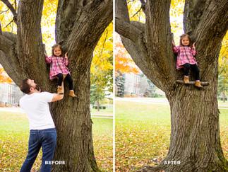Stella in Tree Combined.jpg