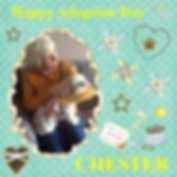 Craft Project 2 CHESTER ADOPT DAY.png
