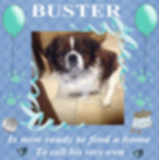Craft Project 10buster ready11.png
