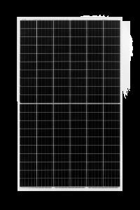 Cheetah Jinko Solar 1.png