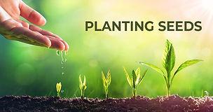 Planting-Seeds-.jpg