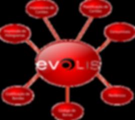 portfolio evolis, medtech tecnologia, impressao de cartoes pvc