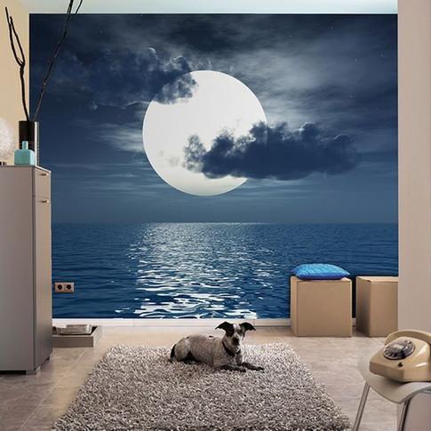 Cloudy moon & water mural