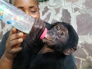 C'arrive giving Tshimbulu a bottle. 2019..jpeg