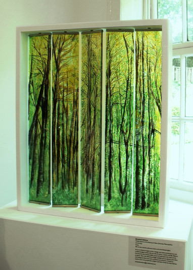 Forest Glass Blinds - Functional Art