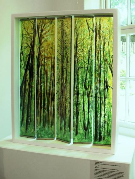 forest-blinds3.jpg