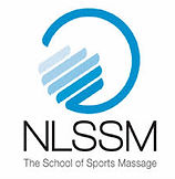 NLSSM logo.jpg