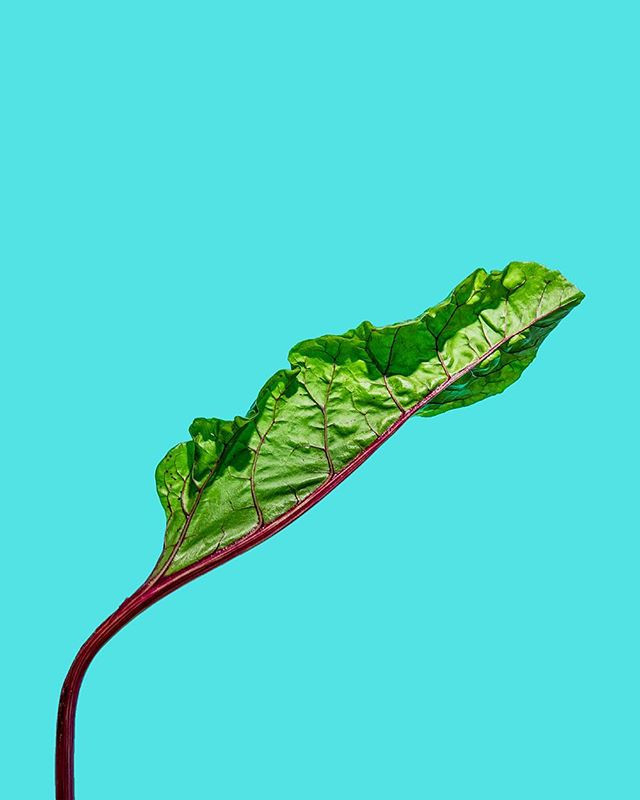 idk about this swiss chard #1
