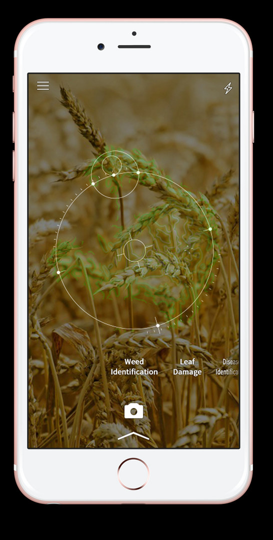 Bayer_App_Radar_iPhone3.jpg