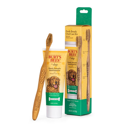 CARE PLUS+ ORAL CARE KIT WITH PEPPERMINT OIL TOOTHPASTE & TOOTHBRUSH