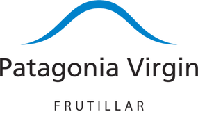 Logo PVF png letras negras.png