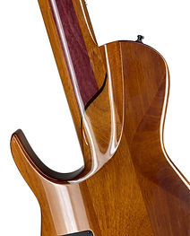 neck through bass dmark omega brazilian mahogany.jpeg