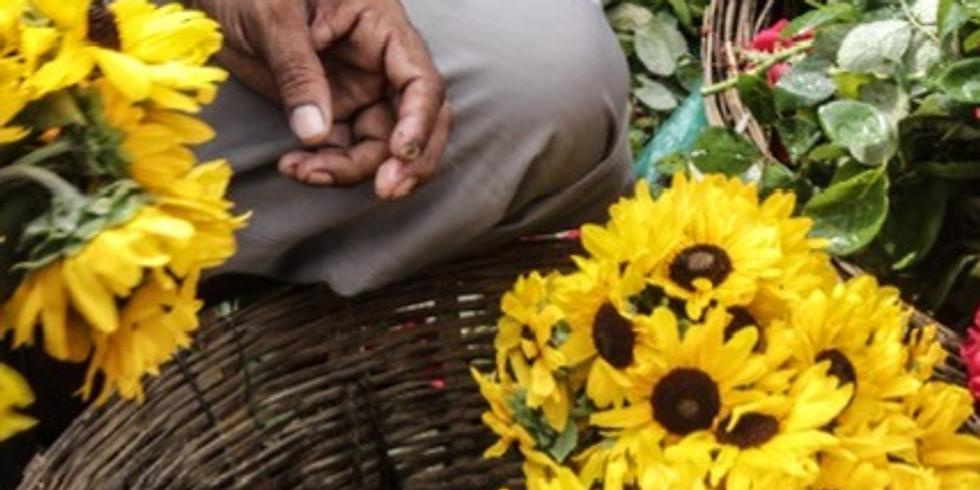Photo Expo: Las flores de Calcuta by Elisa melero