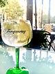 Gin tonic Tanqueray.JPG