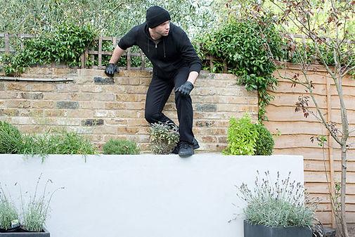 Garden burglar.jpg