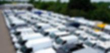 Van fleet.jpg
