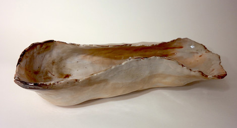 long shell.JPG